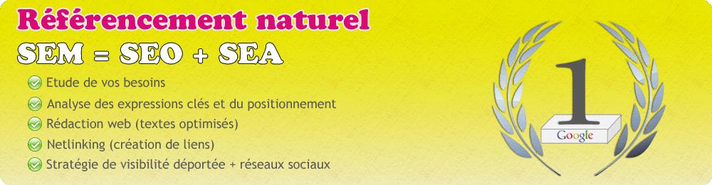 Référencement naturel, SEO et réseaux sociaux